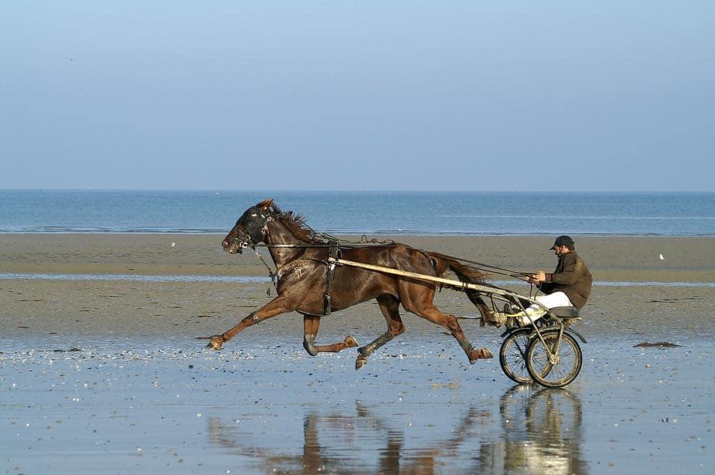 Entrainement à la course en Normandie